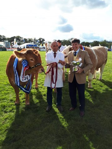 Three Shires Trophy Winner-Moreton Show 2019
